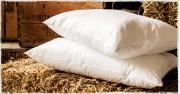 Microfibre Silky Pillow